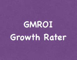 GMROI Growth Rater